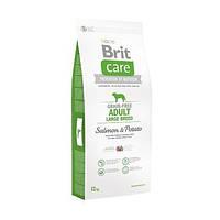 Сухой беззерновой корм Brit Care Adult L для собак крупных пород, с лососем 12КГ