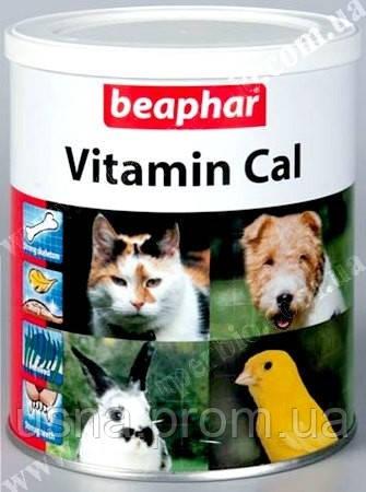 Лучшие витамины для собак и кошек