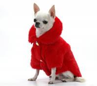 Зимние пальто и шубы для мелких пород