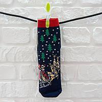 Шкарпетки жіночі з бавовни темно-синій