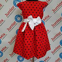 Платье детское на девочку Alessia. ПОЛЬША, фото 1