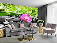 "Фотообои ""Орхидея, камни и бамбук"", текстура песок, штукатурка"