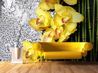 """Фотообои """"Желтые орхидеи и бамбук"""", текстура песок, штукатурка"""