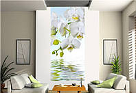 """Фотообои """"Ветка белой орхидеи над водой"""", текстура песок, штукатурка"""