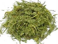 Астрагал шерстистоцветковый (трава) оптом 1кг