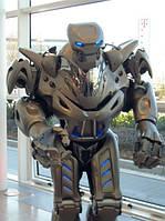 Изготовление и продажа кованых декоративных роботов в Херсоне [купить стоимость цена]