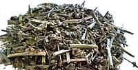 Мелиса (трава) 1кг оптом