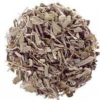 Шалфей лекарственный (трава) 1кг оптом