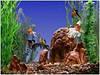 Эскурсия на Монастырский остров с посещением аквариума.