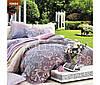 Постельное белье двуспальный комплект Viluta ткань Ранфорс 100% хлопок арт. 12654
