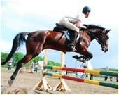 Экскурсия в конно-спортивный клуб «Серебряная подкова» (с. Кировское)., фото 1