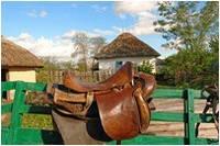 Экскурсия по казацкому хутору «Галушковка».