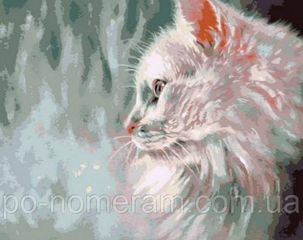 Холст по номерам Mariposa Белый кот Худ Пол Найт (MR-Q785)