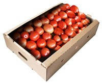 Овощные лотки (Овощные ящики), 360 х 285 х 145 мм, марка П-32