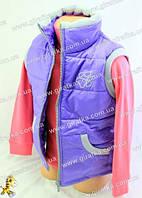 Жилет-безрукавка демисезонный фиолетовый
