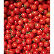 Томат Конори F1 Kitano Seeds 500 семян