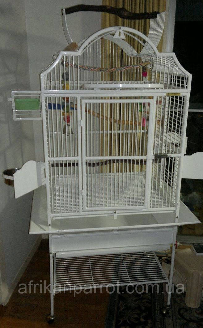 Вольер для попугаев  69*61*157 (King's Cages)