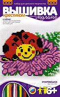 Вм-003 Набор для вышивания крестиком «Очаровашка»