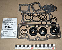 Ремкомплект Р-160 с прокладками