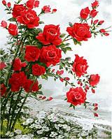 Картина раскраска по цифрам. Розы на ромашковом поле