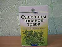 Сушеница  (трава),  50г, фото 1