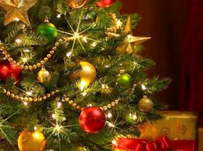 НОВЫЙ ГОД 2020: елки, сосны, Дед Мороз, Снегурочка