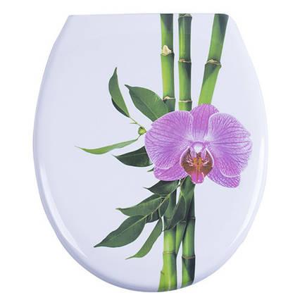 Крышка для унитаза бамбук с микролифтом Conga AWD02181158