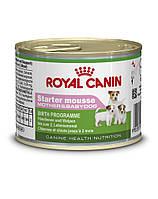 ROYAL CANIN Starter 195 G