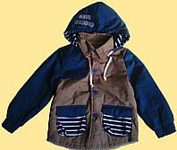 Куртка детская демисезонная, для мальчика