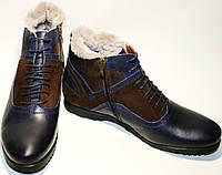 Ботинок зимний мужской Luciano Bellini 05319 классические, синие/коричневые, молния/шнурок, нат. мех/кожа/нубу