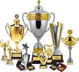 Наградная атрибутика. Медали, кубки, грамоты и дипломы.