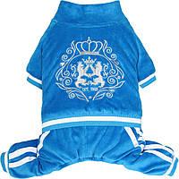 Костюм для собак Добаз,  Dobaz  Luxury velour синий