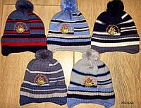 Детская шапка зимняя  3013 (32)