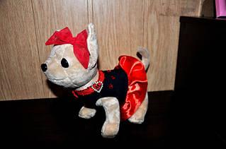 Платье для собачки 20 см Chi chi love (в ассорт.)