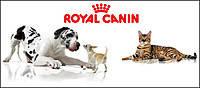 Royal Canin для собак и щенков