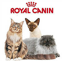 Royal Canin для кошек и котят
