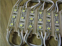 Светодиодный модуль 0,3Вт, белый 6000К, 3 х 3528 SMD, в корпусе, питание 12В, 25мА,  влагозащита IP54