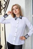 Блузка женская классическая Мелиса (23) $