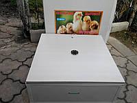 Бытовой инкубатор для яиц с механическим переворотом Курочка Ряба 130 цифровой (укрепленный, тэновый)