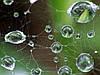 Гидроизоляция. Виды гидроизоляции при строительстве дома