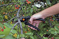 Секаторы для обрезки деревьев, винограда