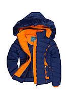 Куртка зимняя ( синяя SPEED)XKZ0245