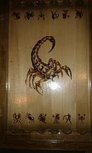 На игровом поле скорпиона  , в доме ,  знак зодиака - скорпион