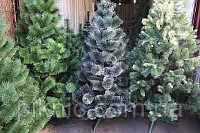 """Искусственная Сосна """"Заснеженная"""" 1,8 м. Новогодняя елка. Штучна новорічна ялинка, сосна 180 см, фото 2"""