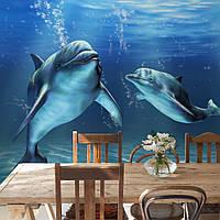 """Фотообои """"Дельфины в столовой"""", текстура песок, штукатурка"""