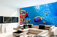 """Фотообои """"Подводный мир в гостинной"""", текстура песок, штукатурка"""