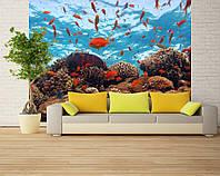 """Фотообои """"С красными рыбами"""", текстура песок, штукатурка"""