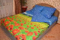 Полуторный  постельный комплект Небо и цветы