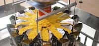 Мини оборудование для производства в макаронах