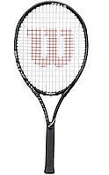 Детская теннисная ракетка Wilson Federer starter set 2014 (WRT223200)